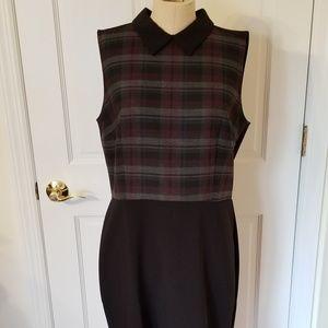 LOFT Collar Dress